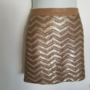 Gold Sequence Mini Skirt
